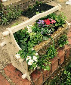 Repurposed magazine rack into a planter