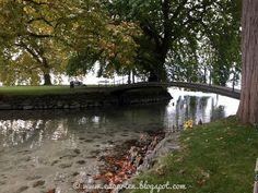 Edgarten - Gartenblog: 🌲 Idyllischer Park am Zugersee Parks, Switzerland, River, Outdoor, Morning Light, Mansions, Cottage House, Outdoors, Outdoor Living