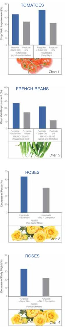 Improves performance of agricultural aids like pesticides, insecticides and fertilisers. Improves crop yield by 167% (see charts) SG assists most crop treatments to penetrate deeper, stick better, stay longer, and work more effectively. Tests has shown: Early blight of tomatoes was down by 46%, 53%. Whitefly and aphid infestation of tomatoes were down by 63% . Red spider mite infestation of roses decreased by 43% and powdery mildew by 33% when SG was used with the crop treatment