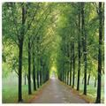 Path of Life Canvas Wall Art | Overstock.com