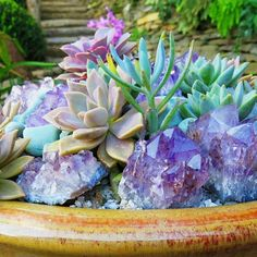 Succulents and crystals in similar color palates. Gorgeous.