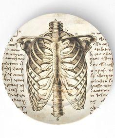 Da Vinci rib cage 10 inch Melamine Plate by TheMadPlatters. $18.00, via Etsy.