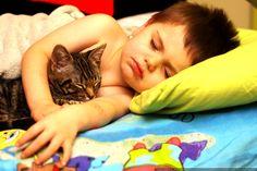 #cat #child #sleep