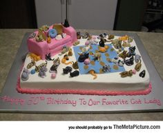Crazy Cat Lady Cake