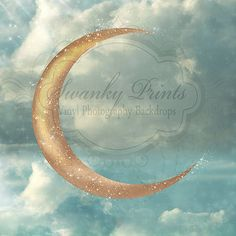Enchanted Night - Oz Backdrops and Props