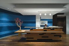 Workspaces, Contemporary Wooden Reception Desk With Blue Wall Color Ideas For Comfortable Office Plan: Reception Desk Design Ideas for Great Business Office Reception Design, Modern Reception Desk, Reception Areas, Reception Counter, Reception Table, Design Entrée, Lobby Design, Design Ideas, Design Trends