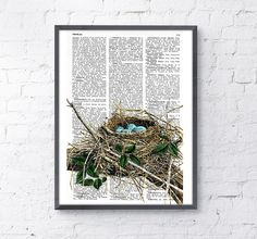 ♥ Robin Bird nest Print on Vintage Dictionary Book    ~The page is about 6.5x9.8 (165x245cm).    ~Your book print will be packaged in a clear plastic