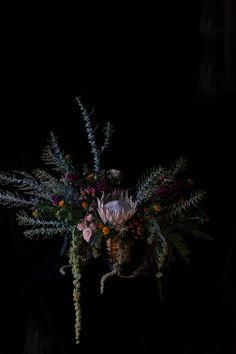 Protea Floral Still Life by Emilia Jane Schobeiri on Artfully Walls