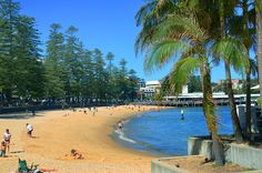 Discover Manly and Sydney's Northern Beaches. Your premier information guide featuring things to see and do, events, dining and more. Sydney New South Wales, Sydney Beaches, Manly Beach, Marine Reserves, Australian Beach, Surf City, Cool Cafe, His Travel, Running Away