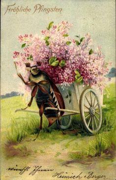 Floral delights.
