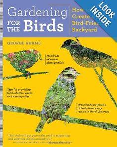 Gardening for the Birds: How to Create a Bird-Friendly Backyard: George Adams