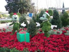 Walt Disney World Christmas Season