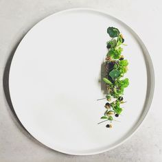 Jari Vesivalo Chef Helsinki Restaurant Olo : Charcoal grilled leek, burbot roe, fermented garlic emulsion, malt bread and dill vinegar