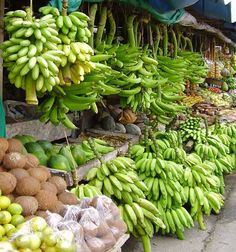 Slippery uses of banana statistics Depending on the indicator and the year, bananas usually end up somewhere between the 8th and 10th position after discarding animal products and non-food crop commodities (adding plantains doesn't change the ranking).