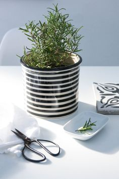 Blumentopf Bunzlauer Keramik Streifen