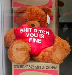 Bear tells it like it is (funny,lol)