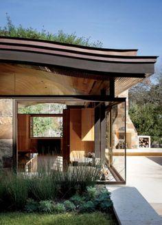 La toiture végétale ou le tapis vert de la biodiversité