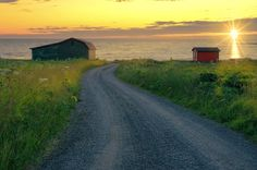 A dirt road leading to Lobster Cove on the Norther Peninsula of Newfoundland Canada. The sun is setting illuminating the grass and ocean ahead. Two Cabins lay along the beach overlooking a spectacular view. Newfoundland Canada, Trail, Country Roads, Ocean, Beach, Nature, Cabins, Image, Naturaleza