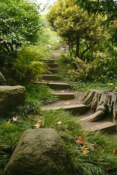 Awesome DIY Garden Steps and Stairs Ideas - MORFLORA - garden steps–would love to have this scene in my yard - Garden Paths, Garden Landscaping, Landscaping Ideas, Garden Stairs, Woodland Garden, My Secret Garden, Dream Garden, Botanical Gardens, Garden Inspiration