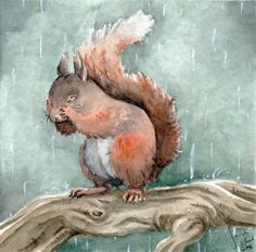 'Time for a Shower' - by Toradh (deviantART) - (rain, rainy day, art, illustration, squirrel)