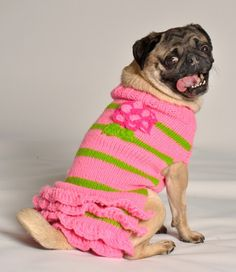 Chilly Dog Sweater Pink Flower-Does your pup love RUFFles? Then sheÆll be in her delight over this Dog Sweater Dress! The Chilly Dog Sweater Pink Flower is a must-have in any little princessÆs wardrobe. Made of beautiful pink and green wool, with all Knit Dog Sweater, Dog Sweaters, Pink Sweater, Sweater Vests, Amor Pug, Chilly Dogs, Cute Small Dogs, Flower Skirt, Dog Boutique
