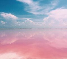 Amazing Pink Lagoon in Mexico