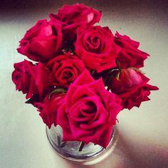 Dark Pink Roses....