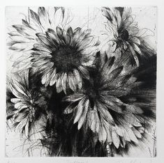 Jake Muirhead / Sunflowers, 2014 / etching and drypoint / 10 x 10 Flower Art Drawing, Sunflower Drawing, Sunflower Art, Botanical Art, Botanical Illustration, Art Sketches, Art Drawings, Pencil Drawings, Paint Photography