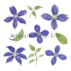 クレマチス・テッセンイラスト «  Watercolor Design Site. Watercolor Design, Site Design, Website Designs, Yard Design, Design Websites