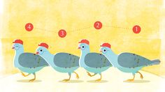 https://theinitium.com/article/20150821-parenting-10thousand-pigeon/