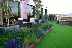 Monique Briones garden designer. terrace, terraza paisajismo