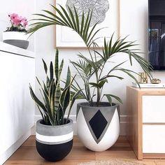 Painted Plant Pots, Painted Flower Pots, Decorated Flower Pots, Concrete Pots, Concrete Crafts, Decoration Plante, House Plants Decor, Deco Floral, Diy Planters