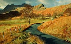 Country roads | ... , Cumbria: Country lanes could be 'defaced' with a million road signs