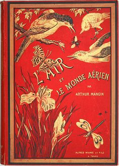 Vintage book cover for 'The air and the aerial world'