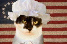 "Meet Betsy Ross, aka ""Luna"" (ID 551562)"