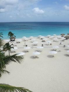 Bucuti & Tara Beach Resort Aruba