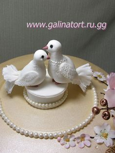 Racing Pigeon Cake Decorations