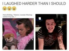 Quite some observation harry styles funny, harry edward styles, Harry Styles Memes, Harry Styles Imagines, One Direction Humor, I Love One Direction, Niall Horan, Zayn, 1d Imagines, Treat People With Kindness, Thing 1