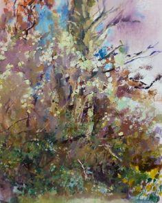 Plein air Irish landscape oil painting Irish Landscape, Contemporary Landscape, Clematis, Impressionist, Landscape Paintings, Scenery, Oil, Artist, Landscape
