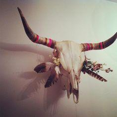 skull, coloured thread, feathers, bull