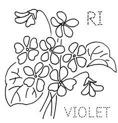Rhode Island Violet by turkeyfeathers, via Flickr