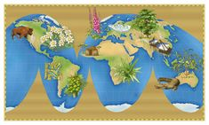 """""""The Origins of Plant Medicine"""" Plus """"Healing Herbs Around Europe"""" at: http://www.motherearthliving.com/health-and-wellness/the-origins-of-plant-medicine-europe.aspx#axzz2VSTra2l5 & """""""" at: http://www.motherearthliving.com/health-and-wellness/the-origins-of-plant-medicine-north-america.aspx#axzz2VSTra2l5"""