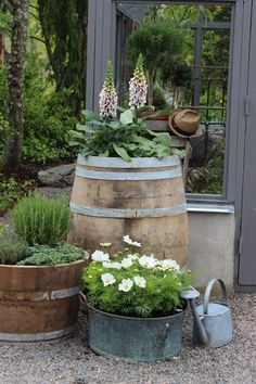 (Piazzan) Wine barrel and container gardening.' (Piazzan) Wine barrel and container gardening.'Wine barrel and container gardening.'(Piazzan) Wine barrel and container gardening.'Wine barrel and container gardening. Rustic Garden Decor, Rustic Gardens, Outdoor Gardens, Back Gardens, Small Gardens, Roof Gardens, Pot Jardin, Garden Cottage, Garden Bed
