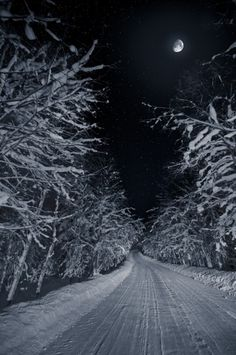 ✯ Winter Night...I love nights like this when the snow is freshly fallen and the night sky seems endless. So peaceful.