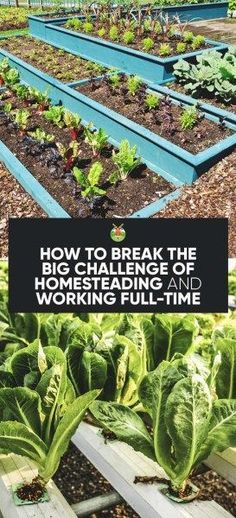 How To Break the Big Challenge of Homesteading and Working Full-Time