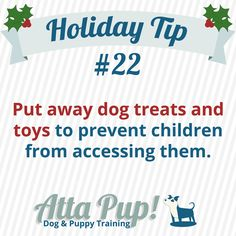 Atta Pup Training Blog: Holiday Tip #22-------   Before guests arrive, put away the dog toys and treats. Only adults should be able get to the toys and treats. Accidents can happen very easily if little faces and hands are too close to treats or toys.