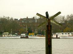 The Thames, Joel Bond Travels, London Discovery