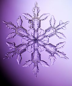 An individual snowflake captured digitally by photographer, Dennis O'Hara. Simply amazing!