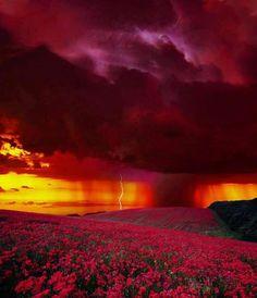 Sunset Lightning, Colorado photo via tatsuhito