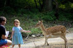 happiness | Flickr - Photo Sharing! Art Therapy Children, Happiness, Happy, Animals, Animales, Bonheur, Animaux, Ser Feliz, Animal